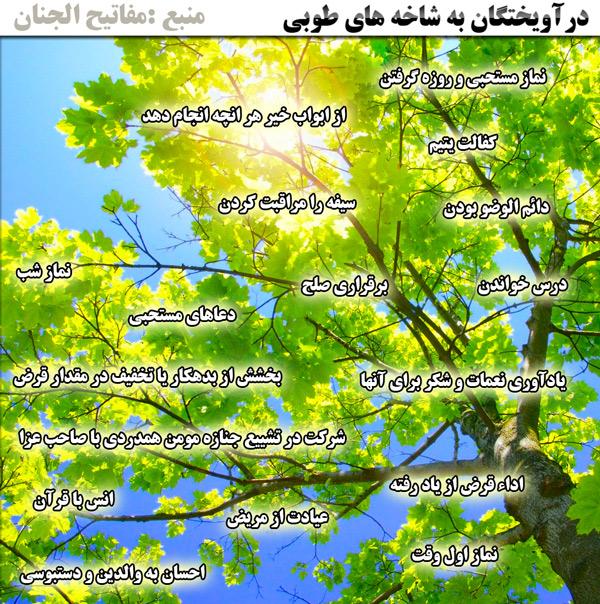 درخت طوبی در مفاتیح الجنان